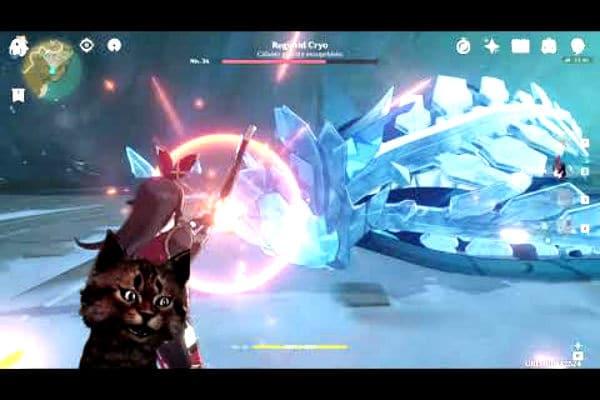 Cryo: Build de Genshin Impact