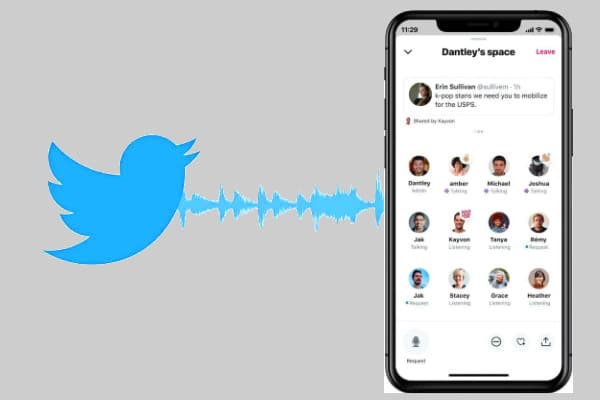 Twitter Spaces audio